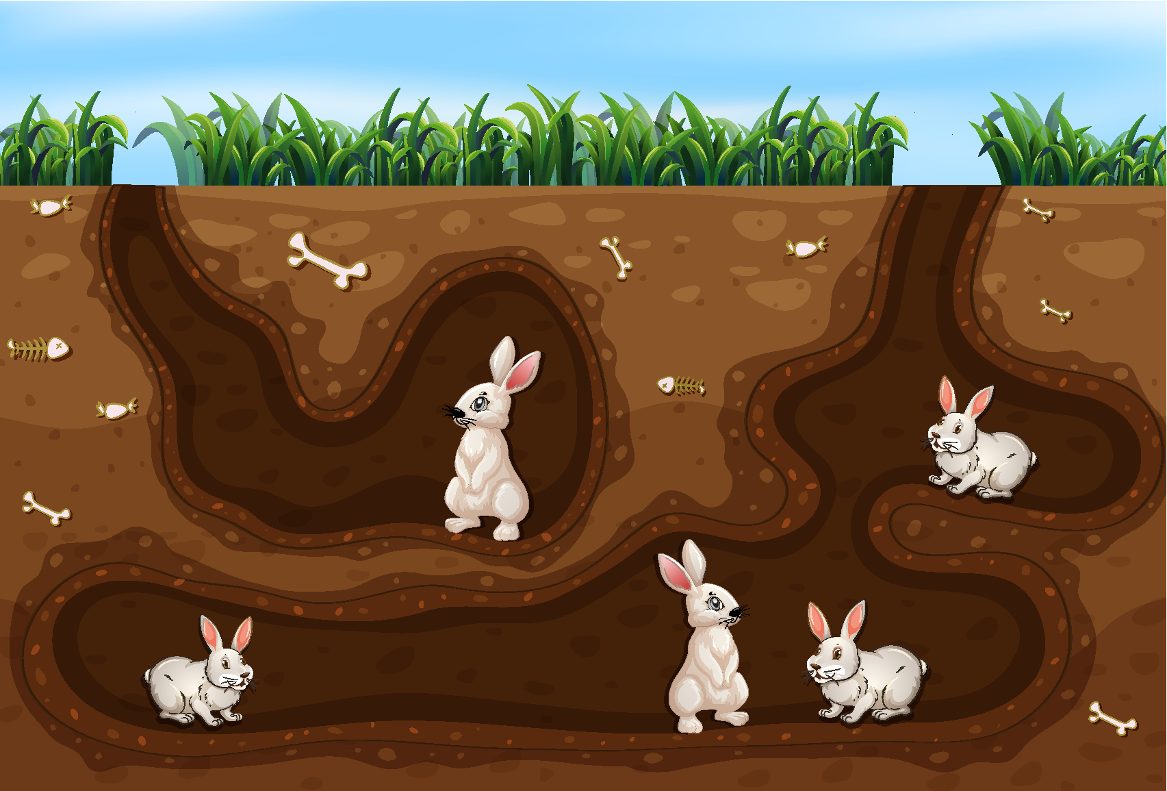 SME Marketing - how not to get lost down the rabbit hole